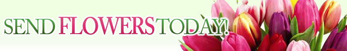 pennsylvania-flowers.com